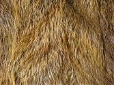 Pelzdecke Nr9 aus Nutria - Fellseite im Detail