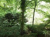 Brixplatz - grünes Paradies